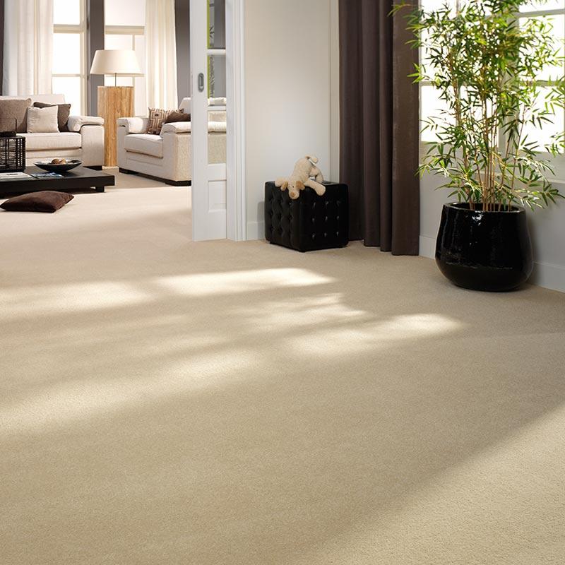 vloerbedekking tapijt